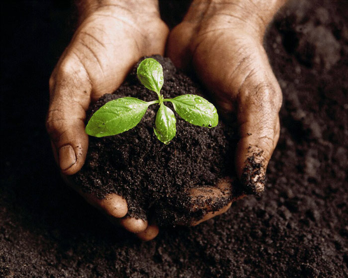 مواد تشکیل دهنده خاک